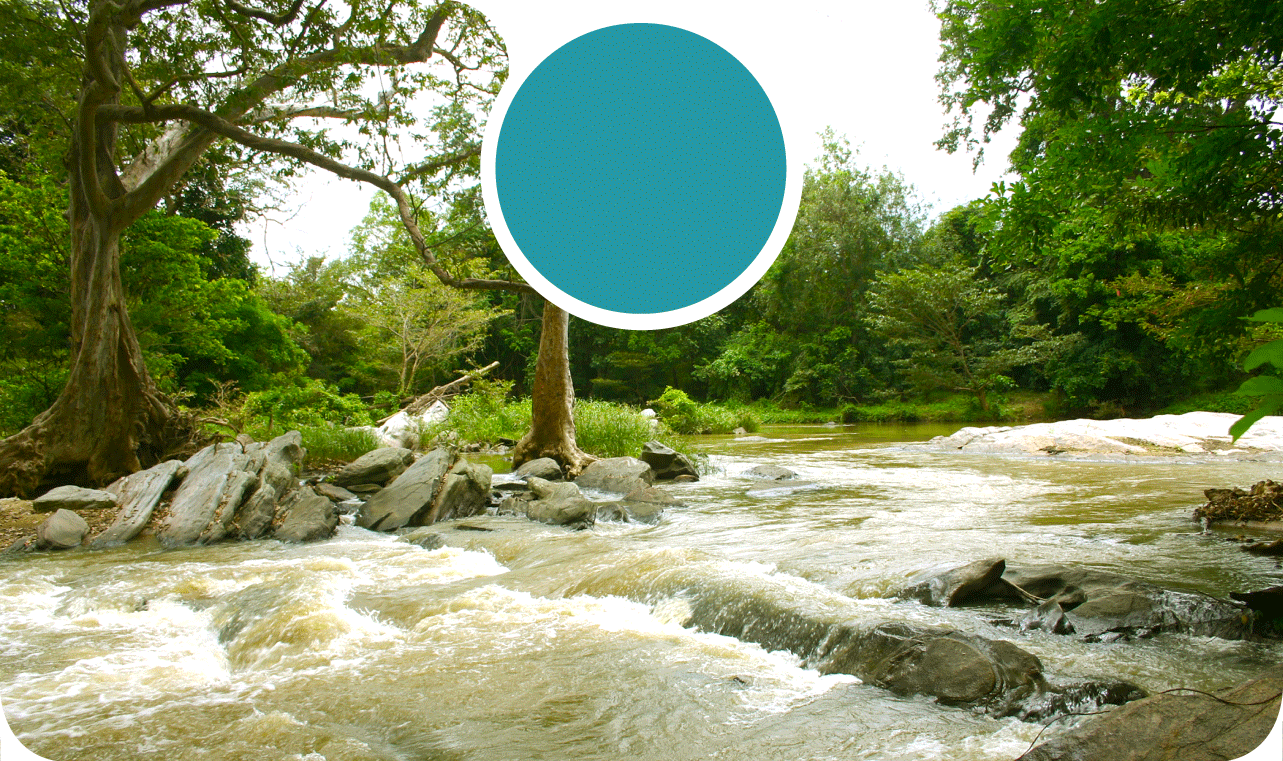 buttala river background image